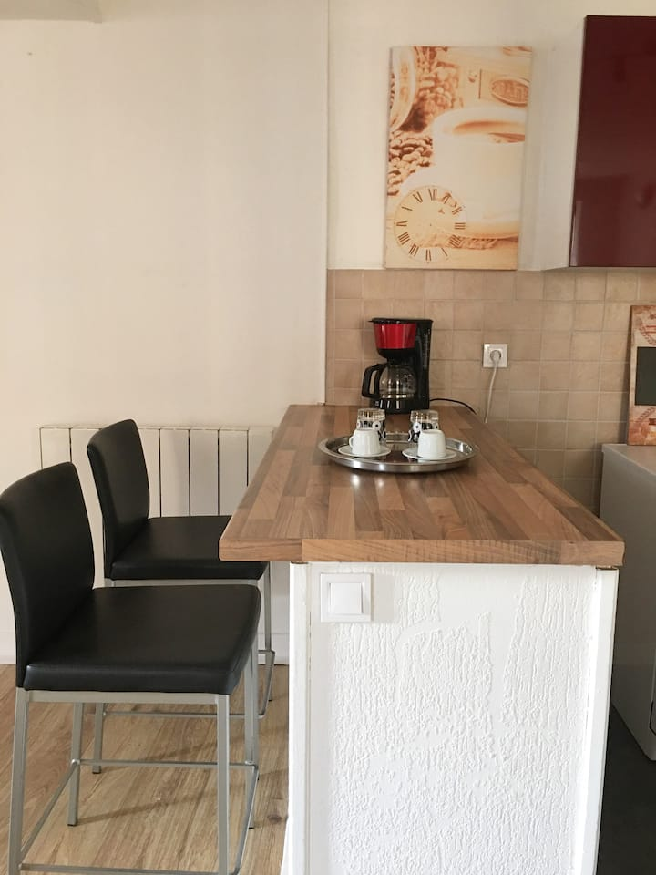 Briare Le Canal: Appartement lumineux