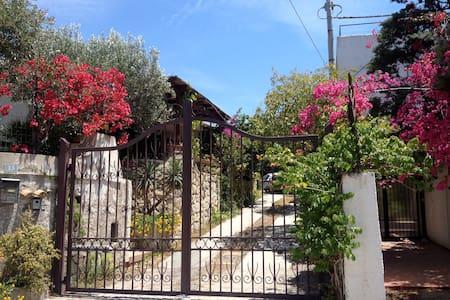 Relaxing holidays in Lazzaro-Reggio Calabria Italy - Lazzaro