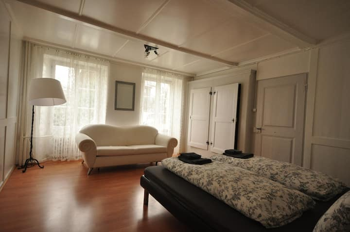 Interlaken Town House.  Sleeps 5 to 12 guests