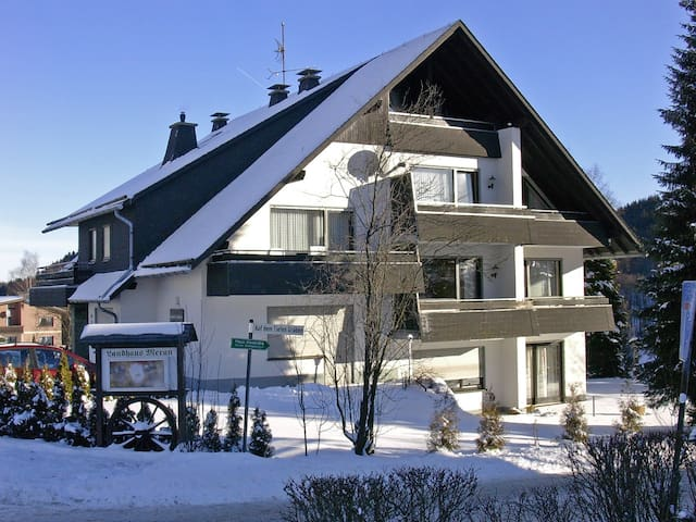 1-room apartment 35 m² Ferienwohnung for 2 persons in Willingen - Willingen - Appartement