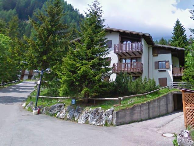 Apartment for 4 in transacqua - Transacqua