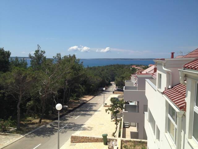 New deluxe apartment near a beautiful beach - Šimuni - Apartment