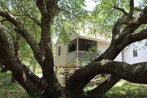 Little House in the Live Oaks