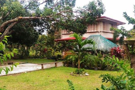The Manzante Farmhouse - Vigan - Villa