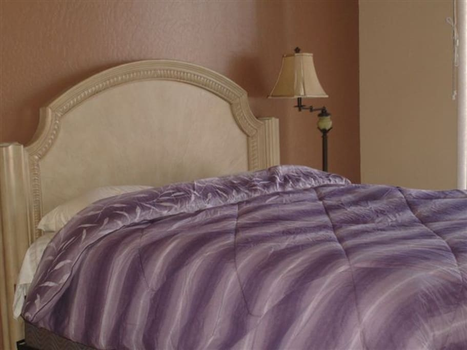 Super comfortable pillow top mattress in master bedroom with comfortable queen bed, comforter, and TV