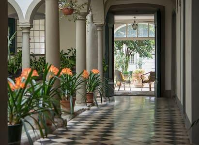 Nel giardino segreto - Borgo A Buggiano
