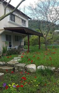 A cozy apt in a pastoral village - Yokne'am Moshava - Apartment