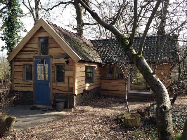 Elfenhuisje midden in het bos - Uffelte - House