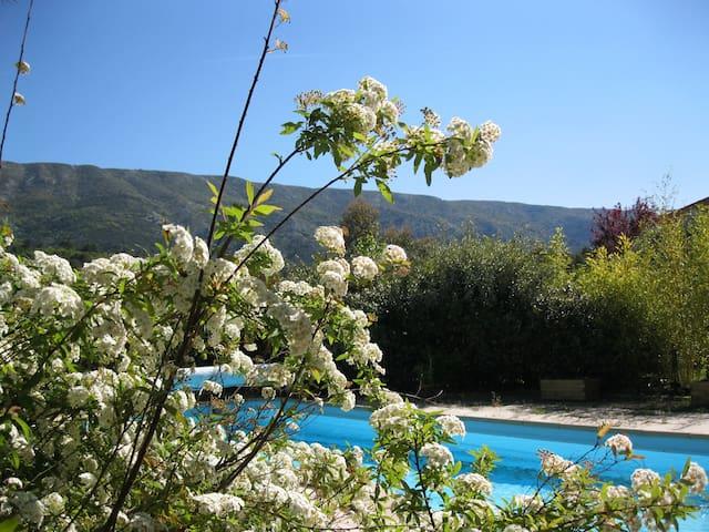Piscine et jardin en fleur au printemps