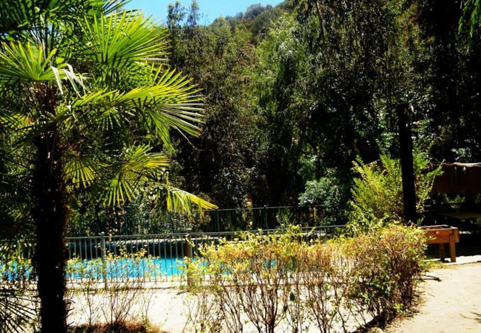 Campo, naturaleza, piscina ideal para disfrutar en familia