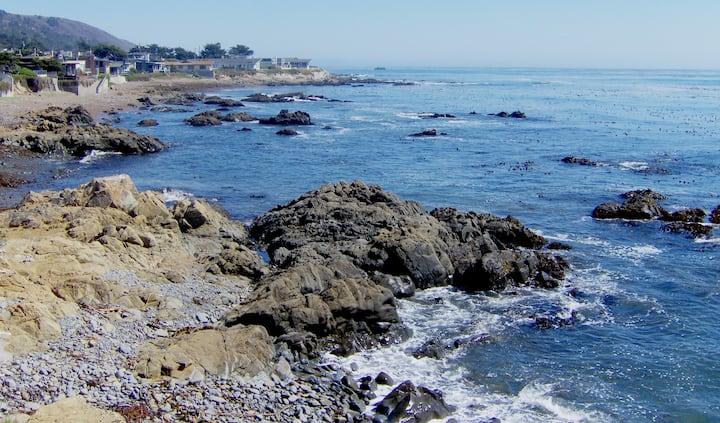 OCEAN VIEW! <2 Blocks 2 the Sea, KING EnSuite 2 Qn