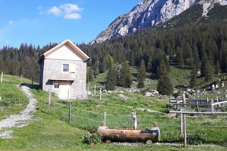 Alphütte / Chäshüttli