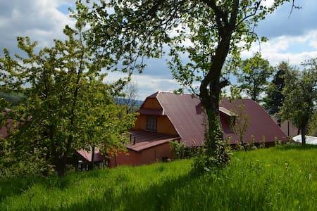 ISTBERG Chalet NO 1 - Istebna - Alpehytte