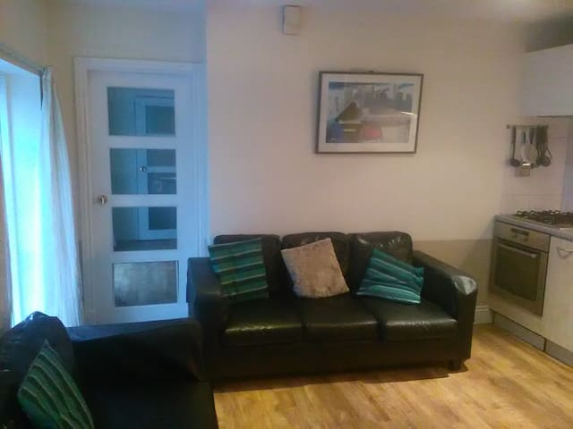 PRIVATE SPACE NEAR UCC &  CITY CTR , QUIET & SAFE. - Cork - Apartment
