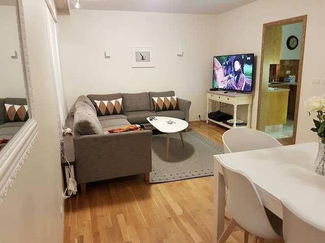 Big cosy apartment, suitable for a big family.