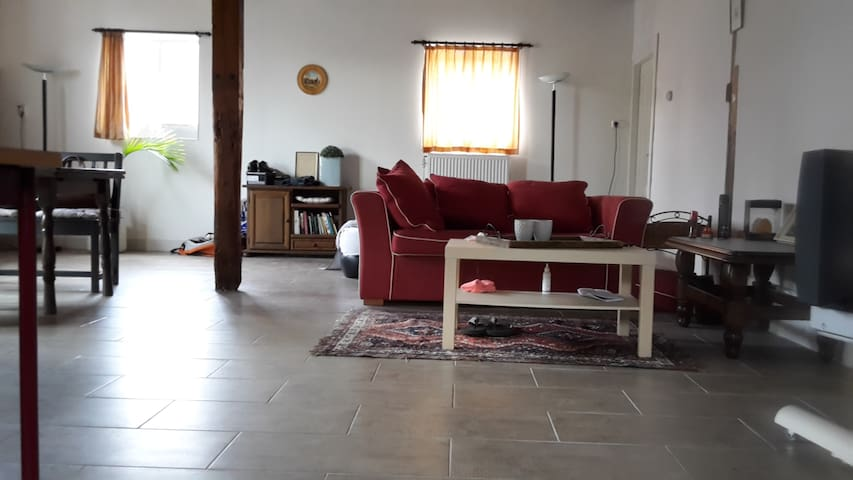 Lovely studio on a Dairy farm! - Zwammerdam - Appartement