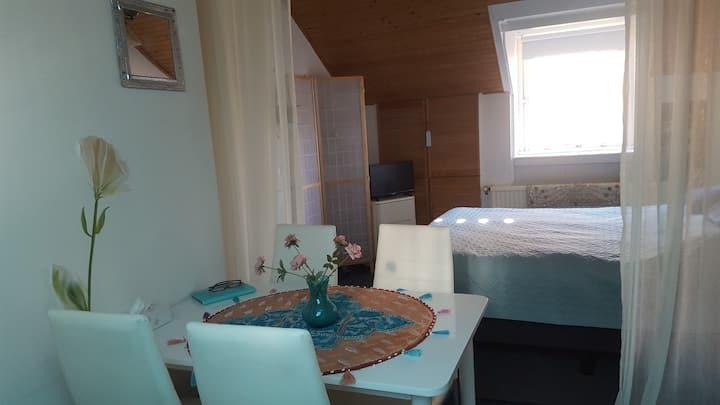Lelystad private room and bathroom and breakfast