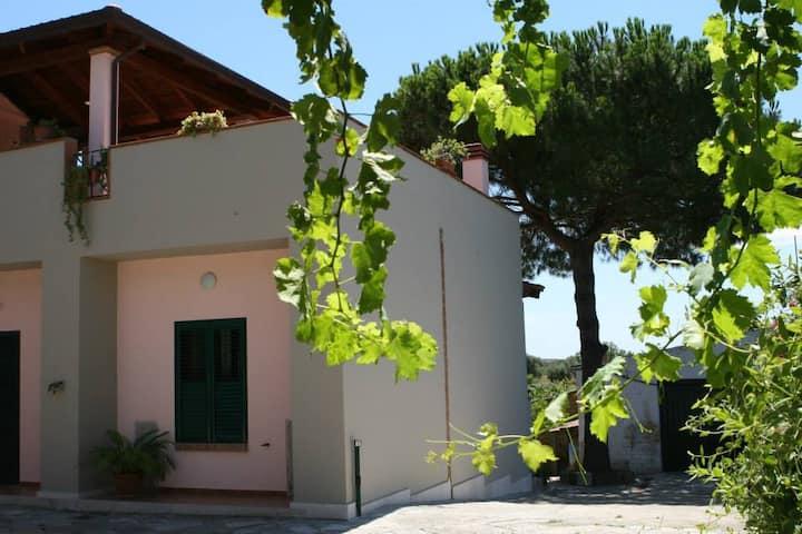 Appartamentino  a Capua fraz. S.Angelo inFormis