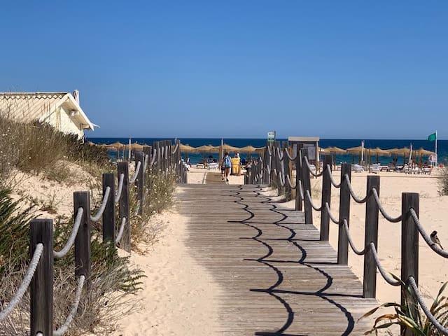 T1 luminoso junto à praia