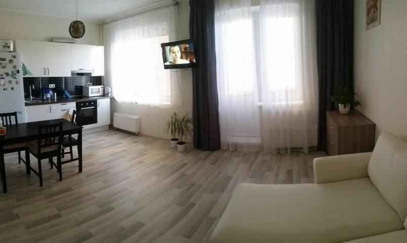 Квартирка)) - Сходня - Lägenhet