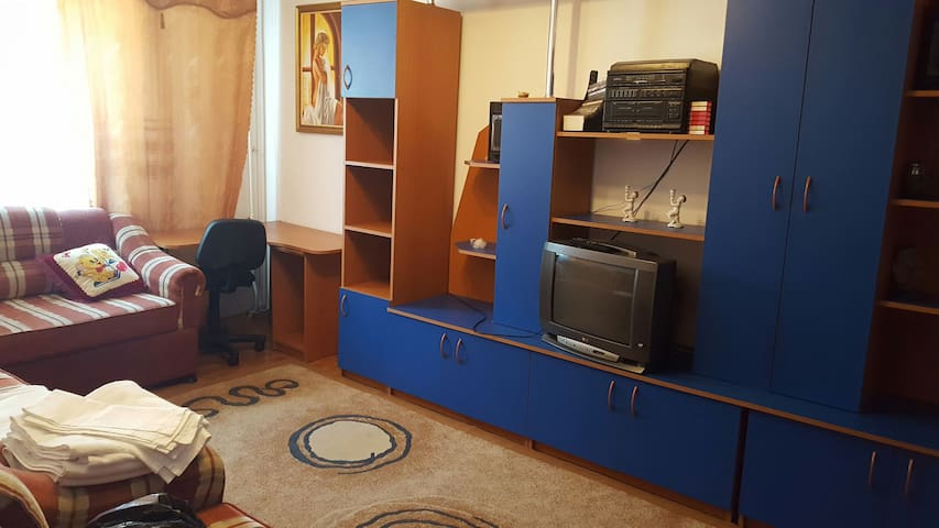 Cozy 1BD centrally located - Slănic - Lägenhet
