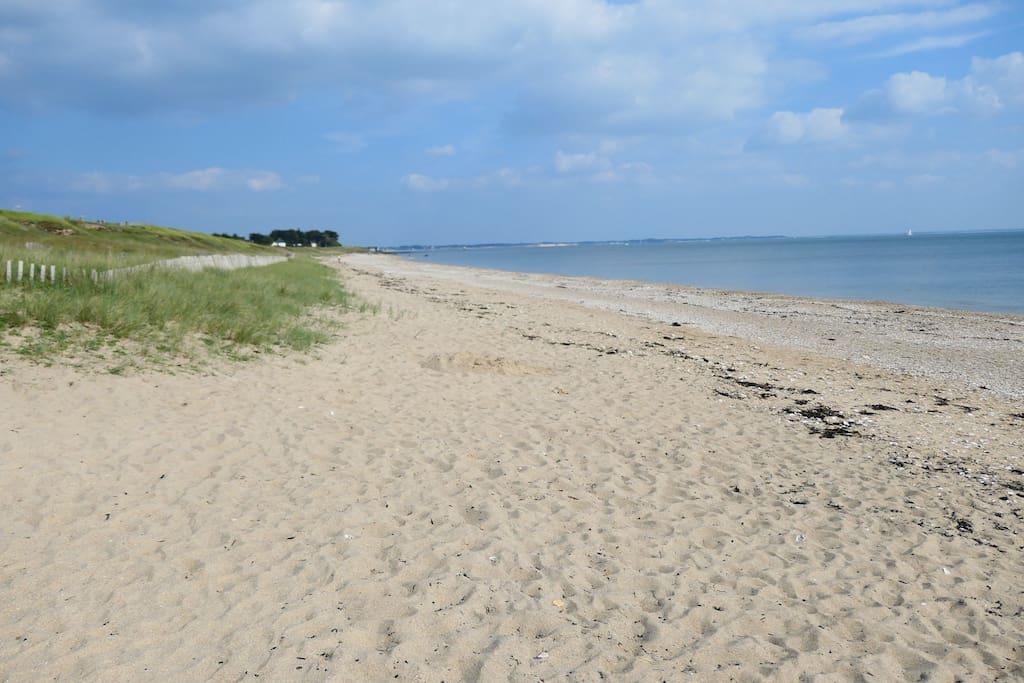 Plein sud 300 m La  plage devant la location
