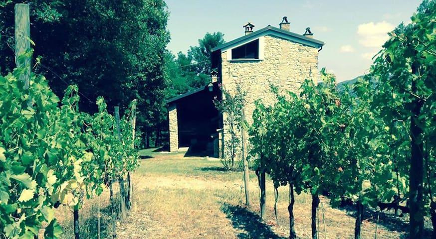 Relais indipendente sui Colli Tortonesi con vigna - Pozzol Groppo - Vila