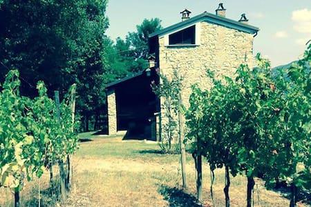 Relais indipendente sui Colli Tortonesi con vigna - Villa