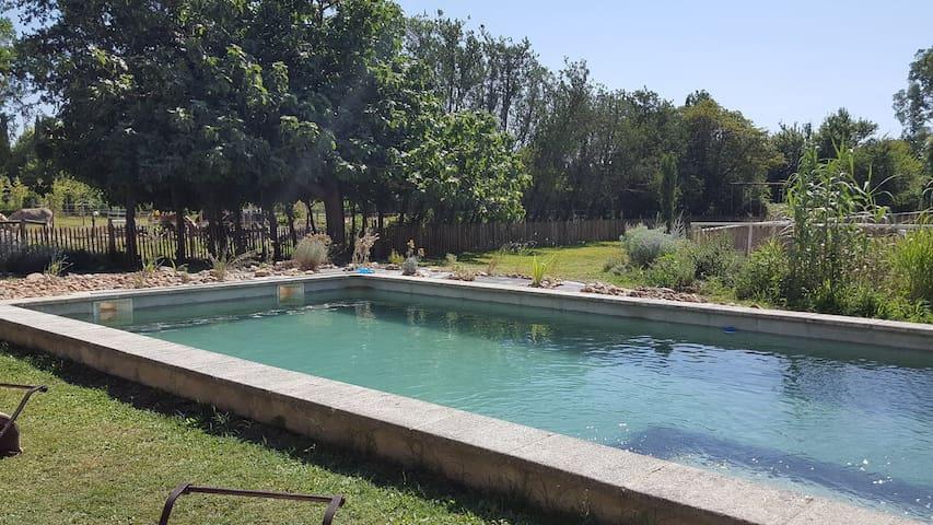 Mas de Bory piscine privative jardin méditerranéen