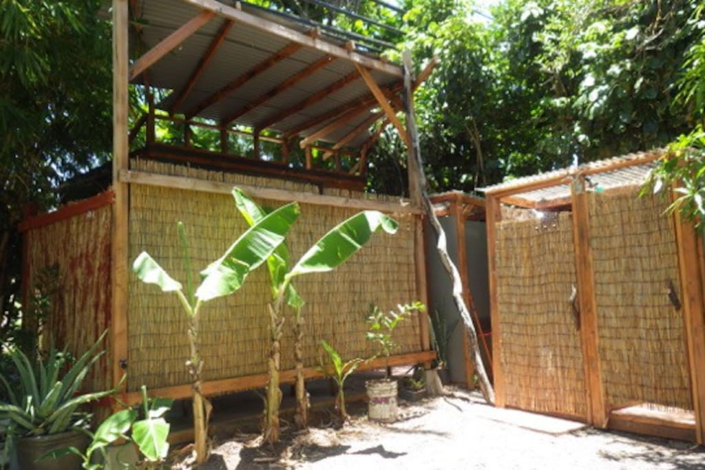 Bannana trees growing right out front, Brand new shared bathroom also outside unit also.