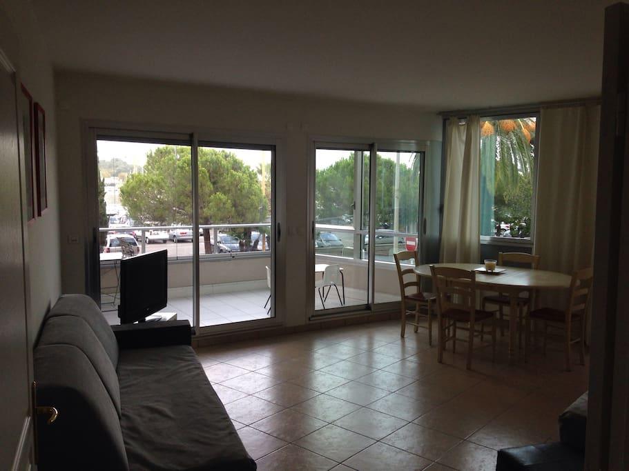 Grand salon tres lumineux avec deux canape-lits ( il s'agit de deux vrais lits simples de 90cm)   Il y a la climatisation ainsi que des doubles vitrages