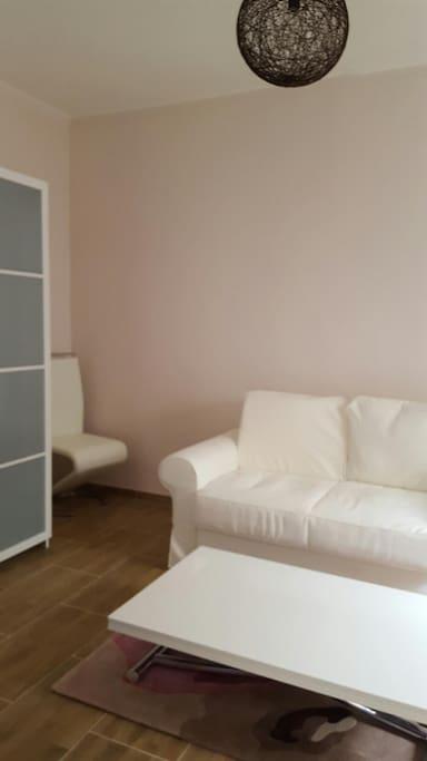 le coin salon avec l'armoire et la table basse et le sofa convertibles