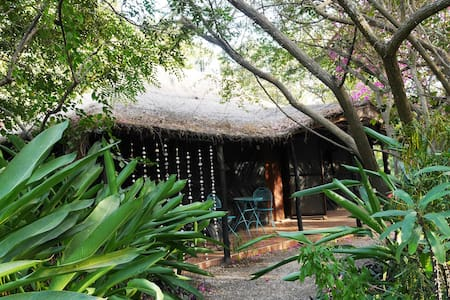 Kaira Bungo - An eco-house in the bush near sea