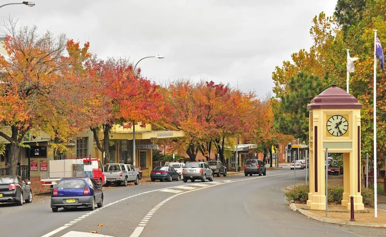 Suzy's Guide to Moss Vale