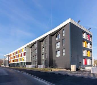 RJP 1 rue du docteur bienfait - Reims
