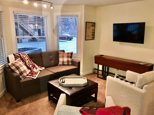 2 Bedroom Condo on Shuttle Route