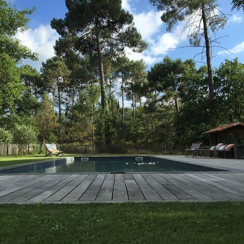 Maison de rêve perdue dans les pins - Callen - Huis