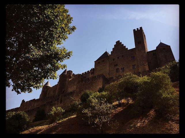 Proche de la Bastide Saint-Louis à Carcassonne.