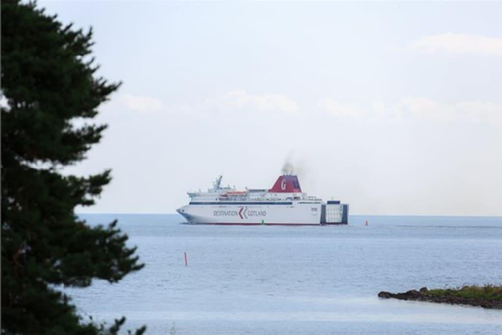 Vid vår kustlinje ser du Gotlandsbåten passera