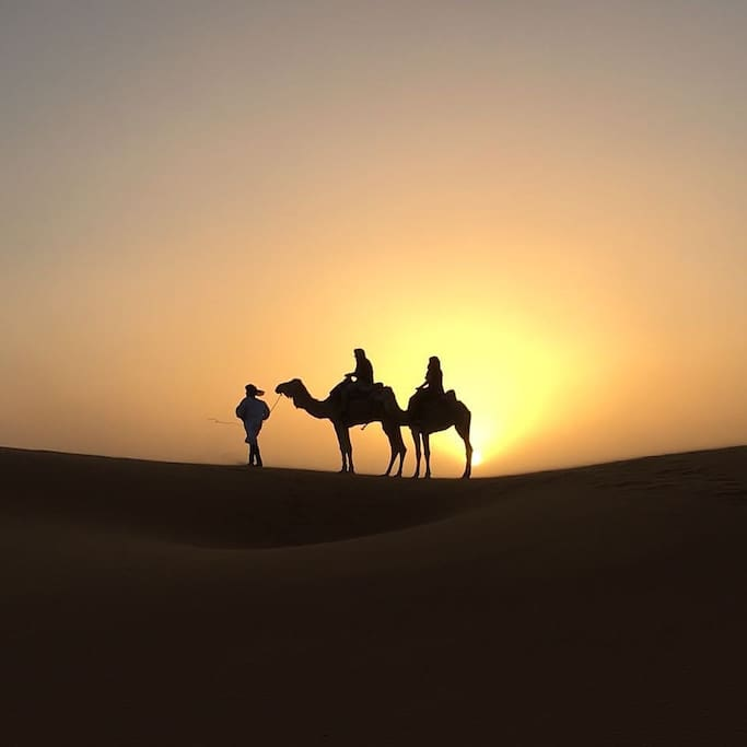 Sunset and camel riding