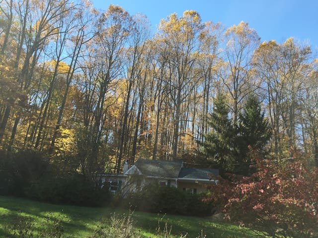 Silk Purse Cottage in fall