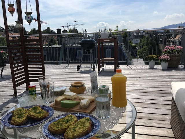 Zurich Apartment with own 40 sqm terrace