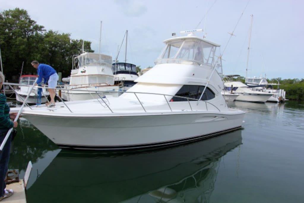 2 bedroom yacht in the water at islamorada boats for rent in islamorada florida united states