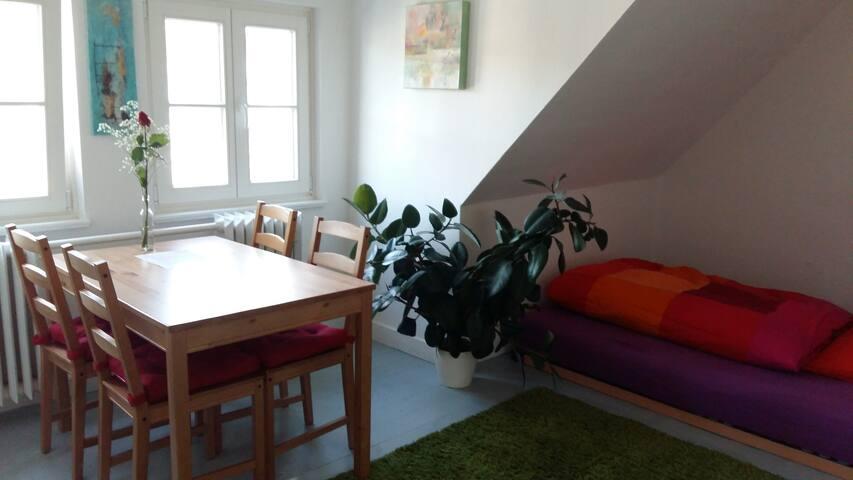 Zimmer in Haus-WG mit Garten - Bonn - Hus