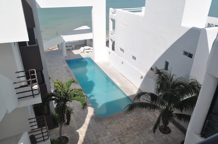 Paradisiac apartment facing the sea