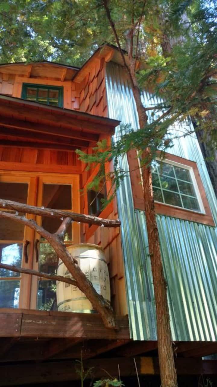 Magical Tree House