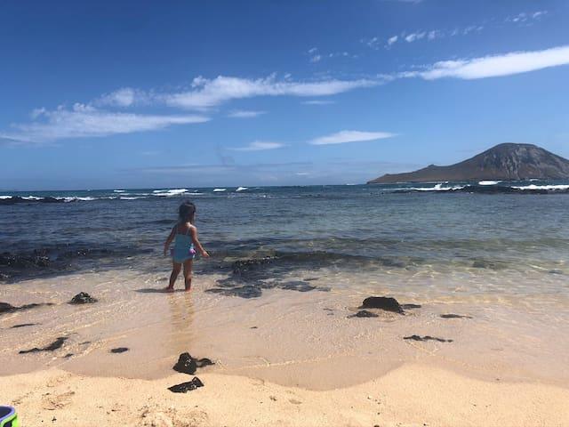 Cheerful corner of paradise in East Honolulu