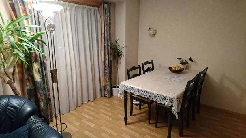 Cozy double room city center Haugesund! - Haugesund  - Appartement