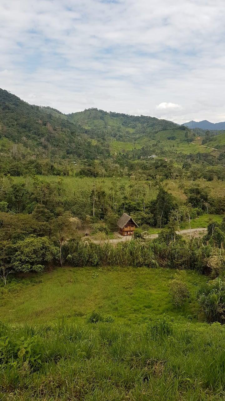 Cabaña de bambú y paja en plena amazonía