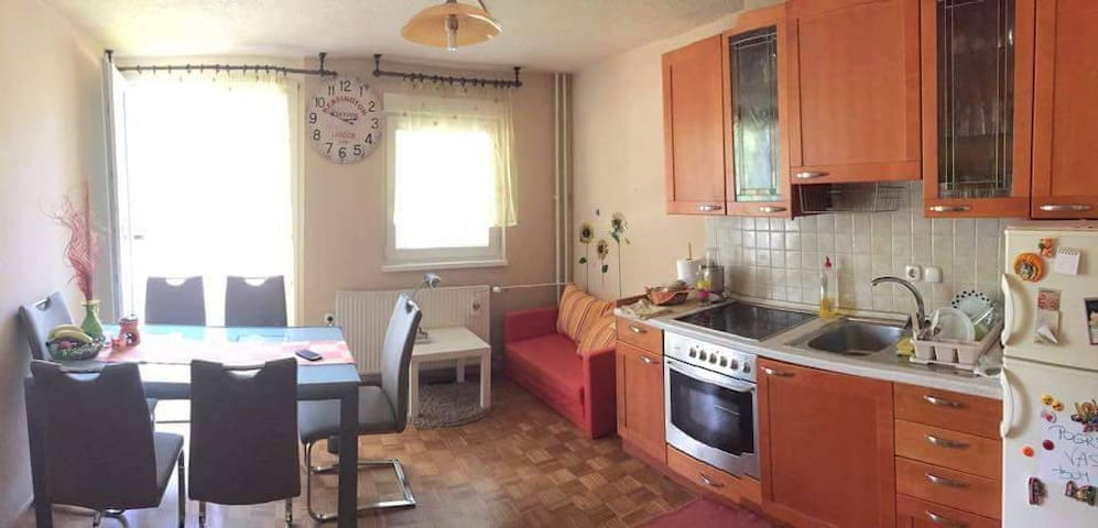 Comfy room in central LJ, + Free Parking - Ljubljana
